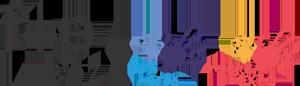 Logo F+P Biz2